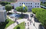 Hastear da Bandeira em Pampilhosa da Serra
